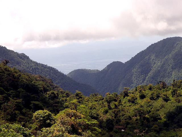 Juan Castro Blanco National Park, Costa Rica