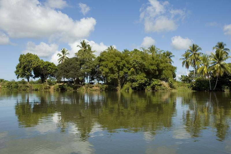 Rio Sierpe, Palmar Sur, Costa Rica
