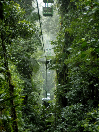 Trams through the Rain Forest, Braulio Carillo National Park, Costa Rica