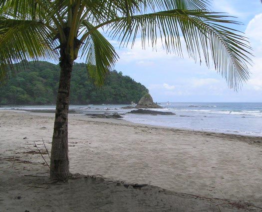 Playa Guiones, Nicoya Peninsula, Costa Rica