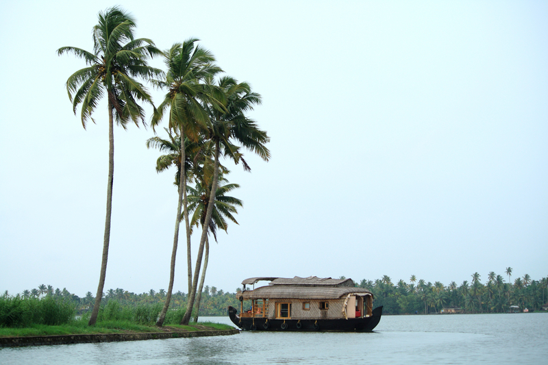 Backwaters of Marari, Kerala, India