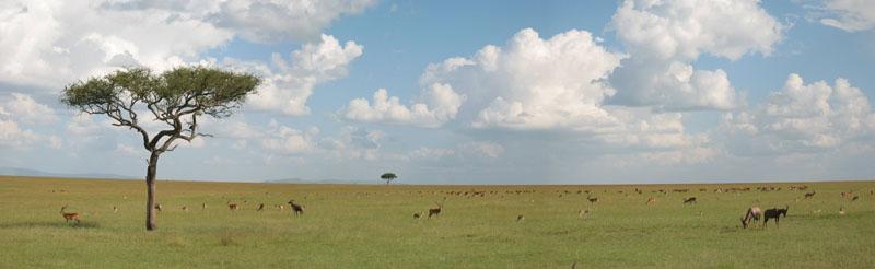 Mara-skyline, Kenya