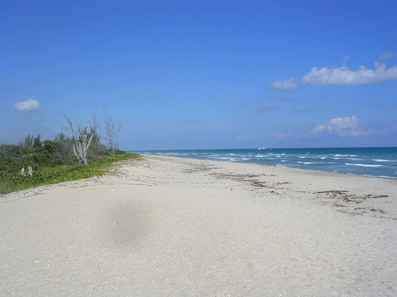 Beach, Port St. Lucie, Florida