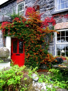 B&B Athenry Ireland
