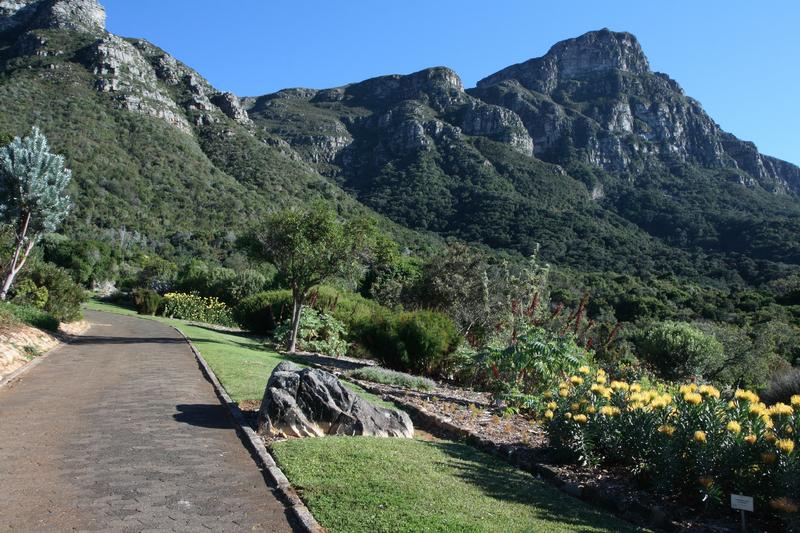 Kirstenbosch Botanical Gardens Cape Town, South Africa
