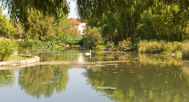 Monets Garden and Lily Pond, Giverny, France