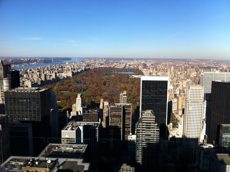 Central Park as seen from Top of the Rock, New York