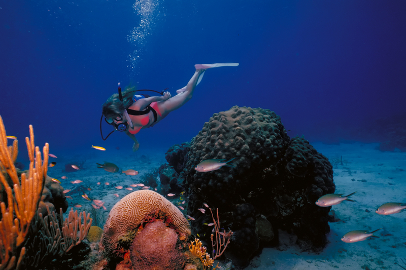 Scuba Diving British Virgin Islands