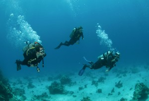 Three Friends Scuba Diving
