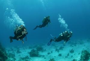 Three Friends Scuba Diving