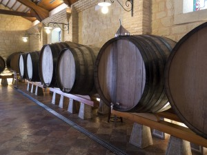 Wine Barrels - Spanish Bodega - Spain