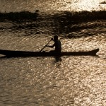Man in canoe on sunrise. Kerala backwaters, India