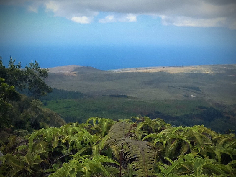 Palawai Basin from the top of the mountain. Lanai, Hawaii Photo by R. Kongaika
