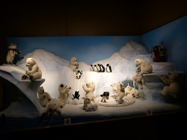 Icebears, Bear World Museum Hawaii, Photo by R. Kongaika