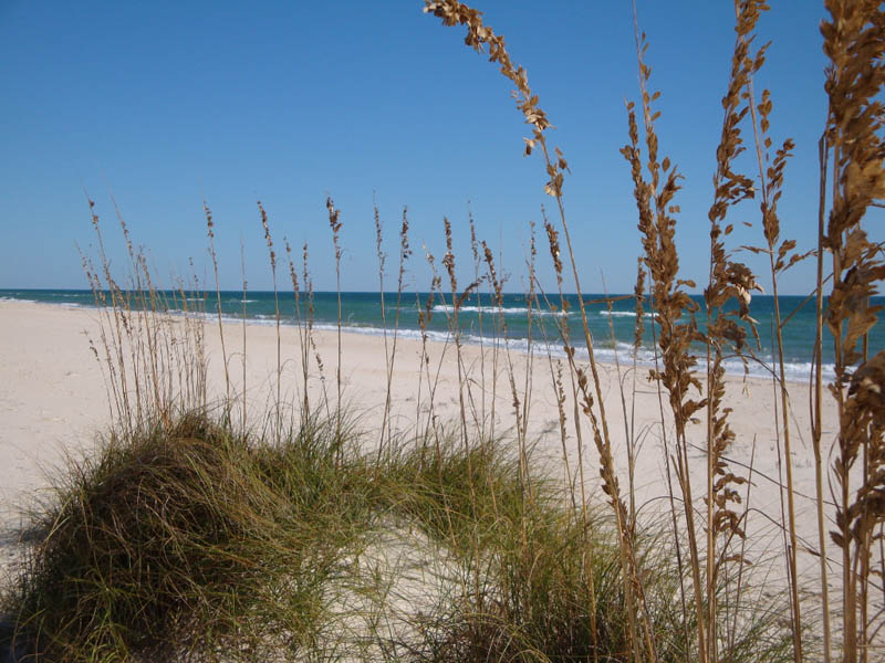 Quite beaches of St George Island Florida