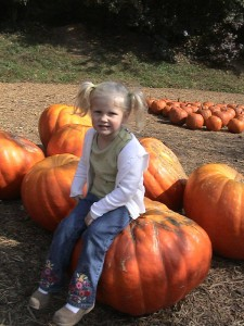 Pumpkins of all sizes, Georgia