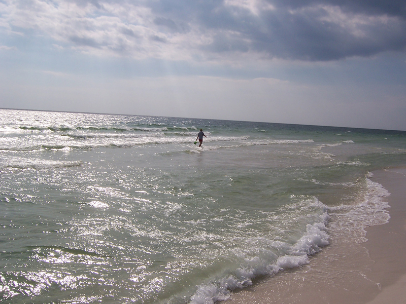 Shelling on Shell Island, Panama City Beach, Florida