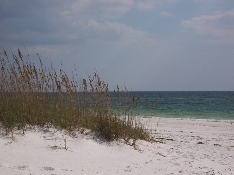 White sands of Shell Island, Panama City Beach, Florida