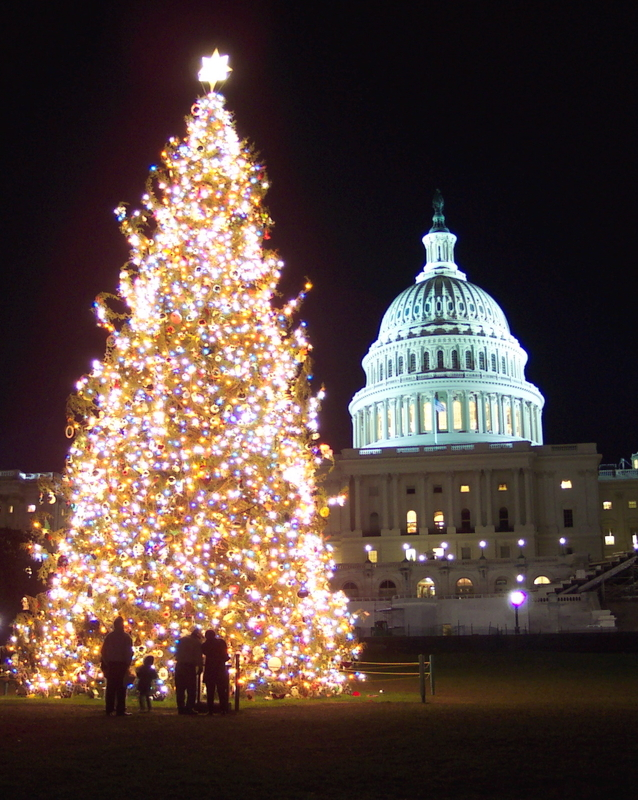 Capitol building and Christmas tree in Washington D.C. during Christmas time