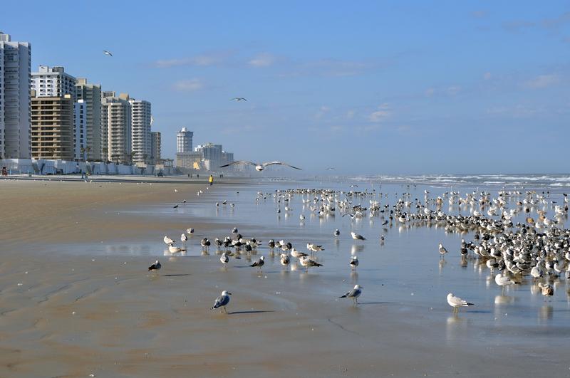 Hard Sand of Daytona Beach, Florida