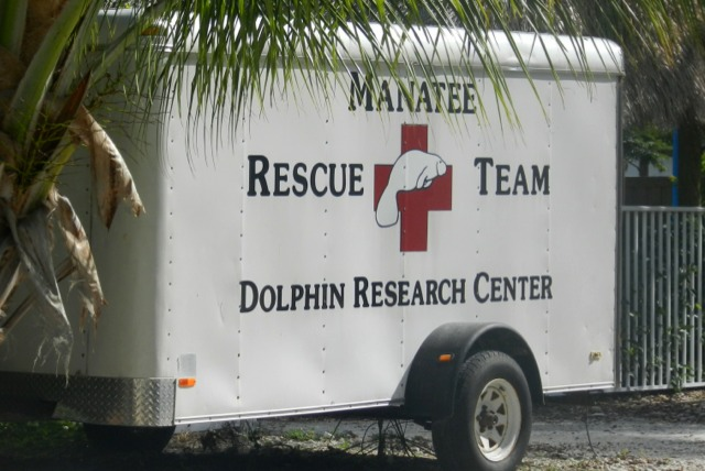 Dolphin Research Center Manatee rescue vehicle, Florida Keys